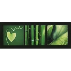 Végétaux verts