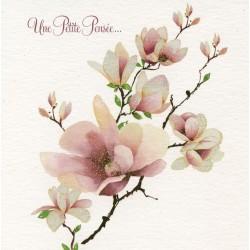 Branche magnolia